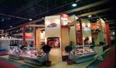 Kiallitas Exhibition 41